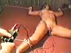Xtremepain electro  torture